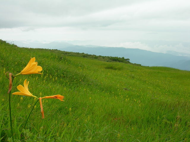 Midagahara, Mt. Gassan