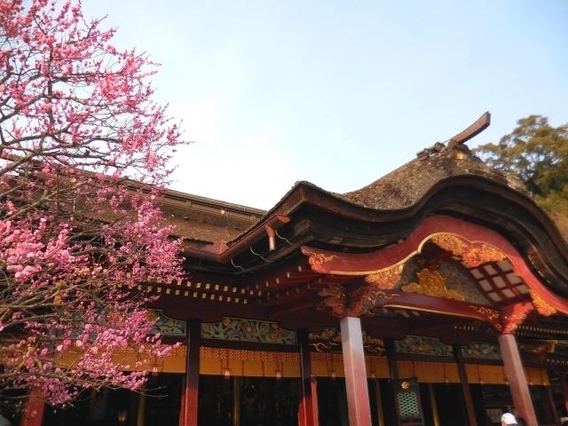 Dazaifu Tenmangū