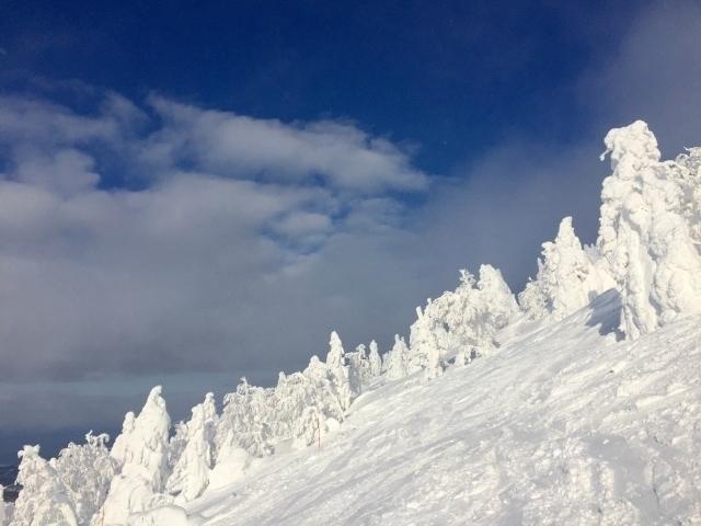 Ice monsters at Mt. Hakkōda