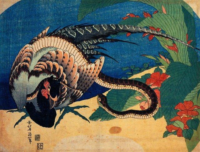 Pheasant & Snake.jpg