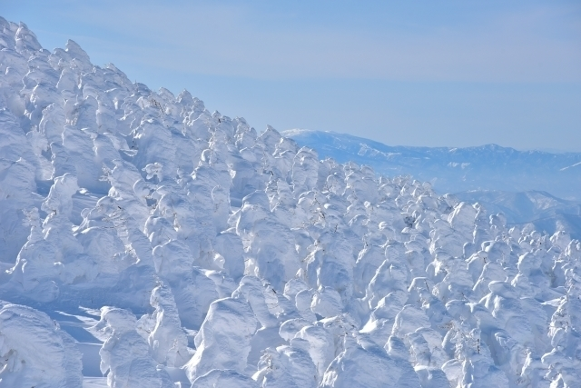 Ice monsters at Zaō Moutains