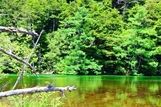 Myōjin Pond